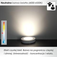 Oprawka LED podszafkowa okrągła z dystansem