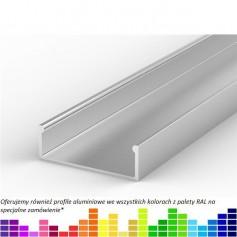 Profil led P13 nawierzchniowy 31 x 10 mm